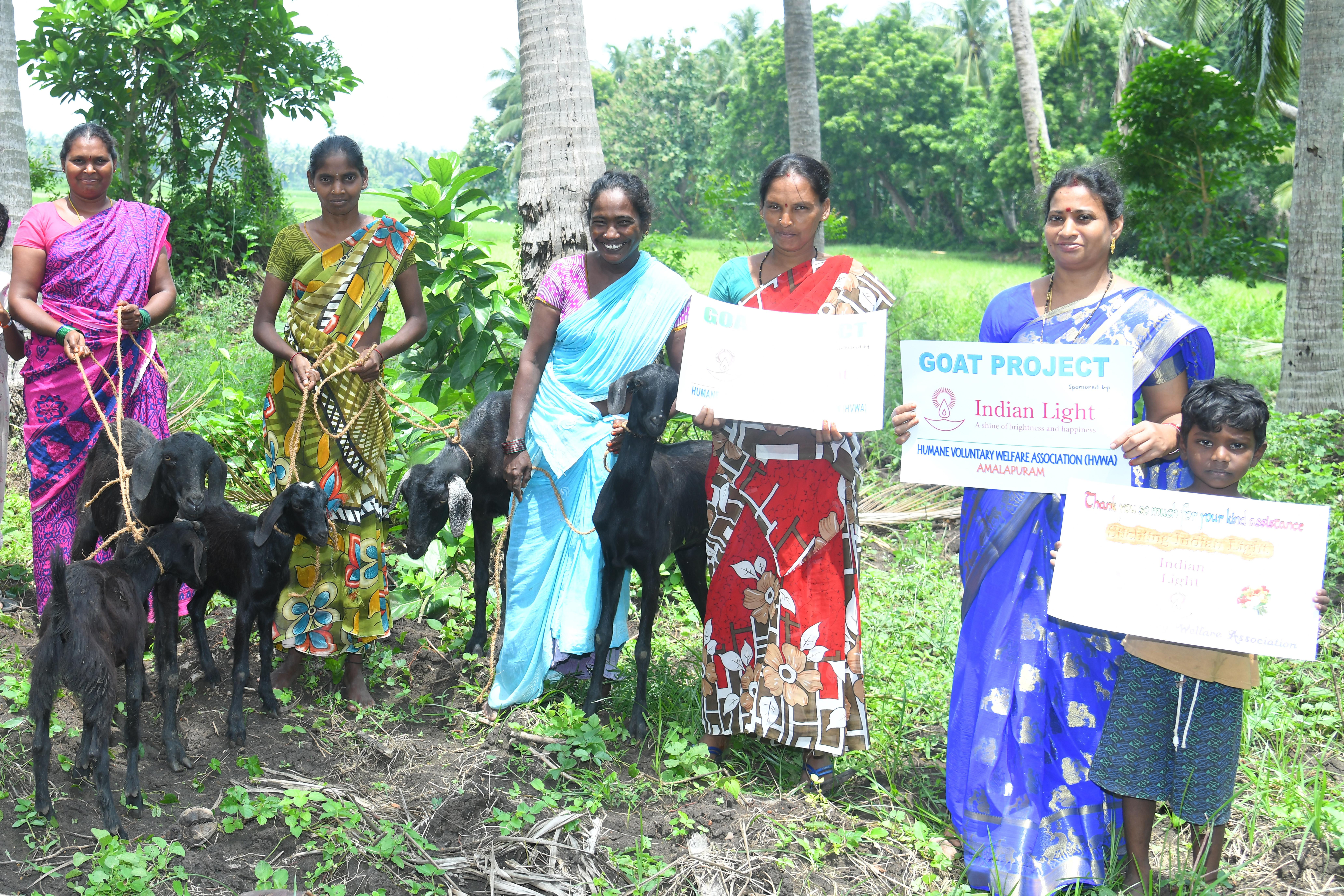 Goat project ILF India